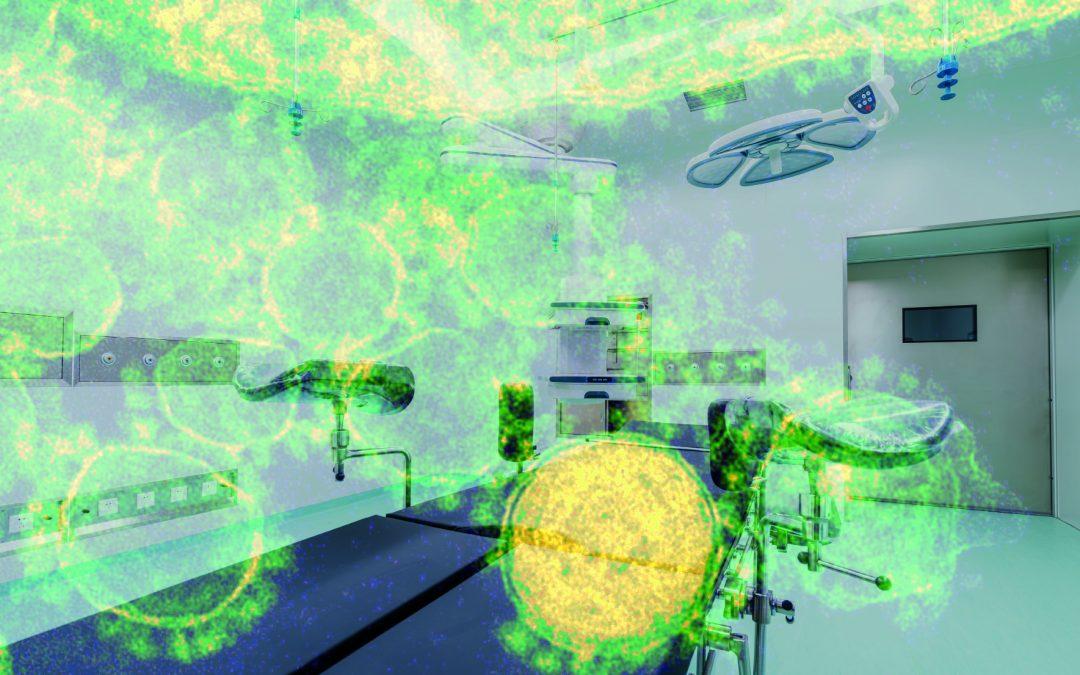 Nova ameaça: superfungo preocupa Anvisa e requer atenção redobrada dos hospitais